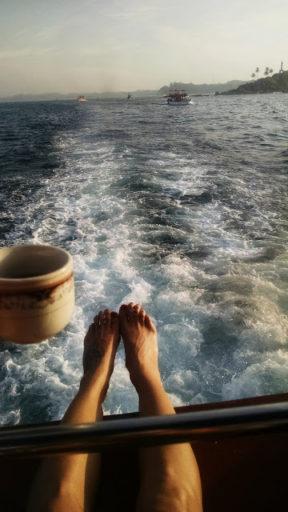 Cestou necestou na lodi za veľrybami
