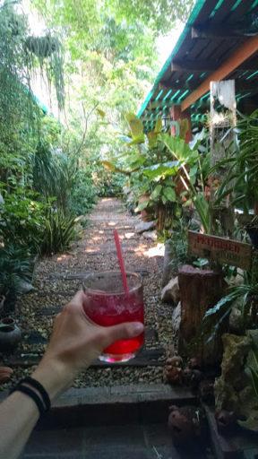 Welcome drink v krásnom prostredí P.Y. Guest House
