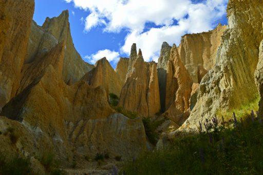 Naša prvá spoplatnená zastávka boli mohutné skaly Clay Cliffs. Sú umiestnené na súkromnom pozemku, takže nás neobišiel príspevok 5 NZD do kasičky pred vstupom